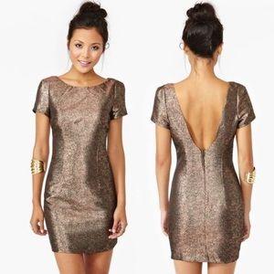 Ladakh Glimmer Gold/Bronze Dress 4